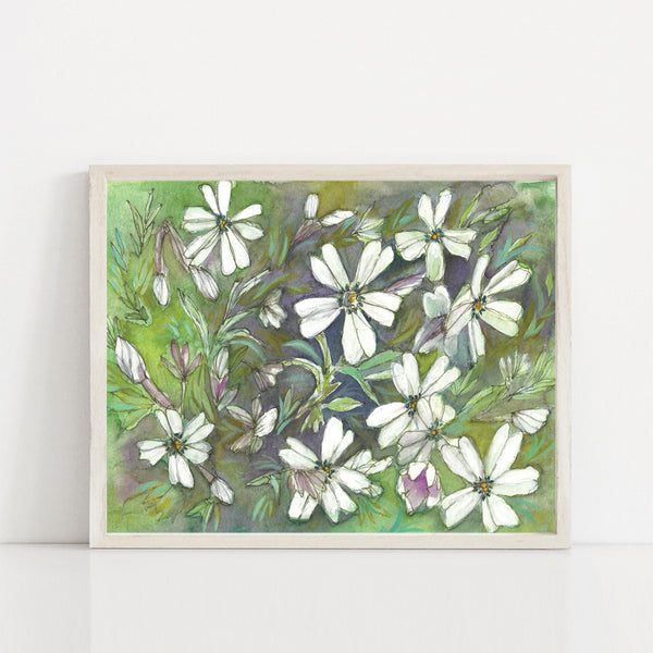 Phlox Flowers Painting