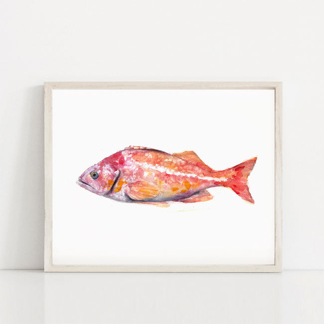 """First Fish"" Tropical Fish Art Print"