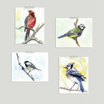 Birdsong Gallery Wall Set of Four Prints