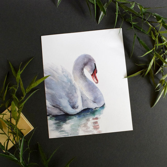 """Willow"" Swan Art Print"