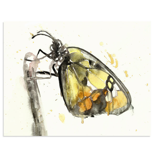"""The Visitor"" Butterfly Art Print"