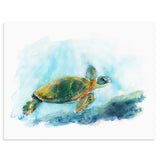 """Mariner"" Sea Turtle Art Print"