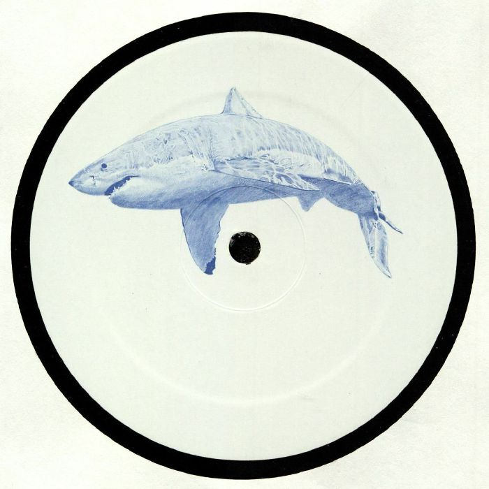 Kyle HALL The Shark (12