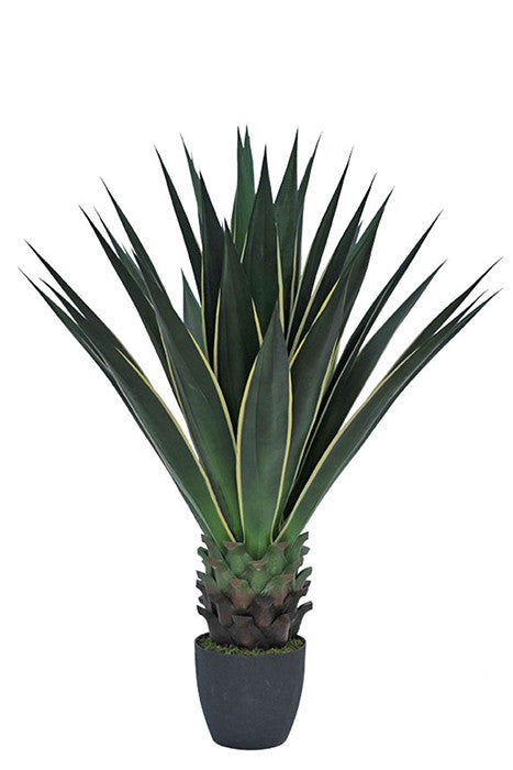 Agave - 100 cm - The Nest Shop