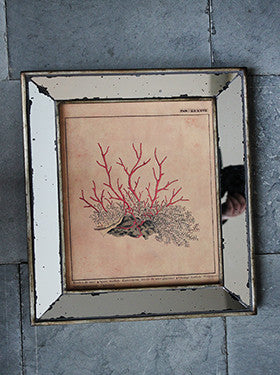 Mirror Frame - Coral Orange - The Nest Shop