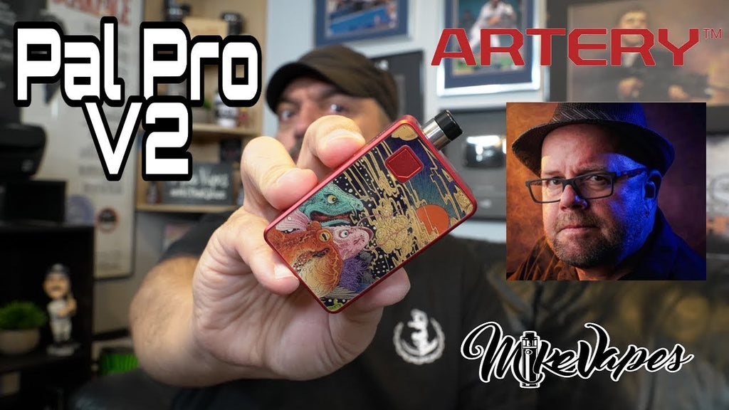 A Review of the Artery Pal Pro 2