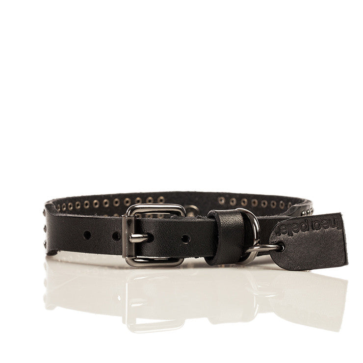 Linea Pelle Nailhead Stud Dog Collar in Black