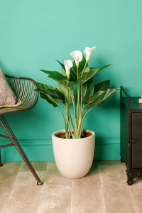 White Lilly Artificial Plants Flowers in Plastic Pot Indoor Outdoor Faux