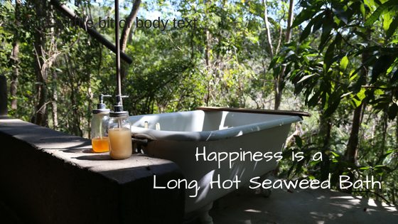 Happiness is a Long Hot Seaweed Bath