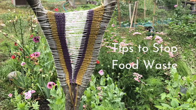 Food Waste Free Tips for October