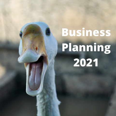 Funny face on a duck to illustrate the difficulties of business planning during a pandemic