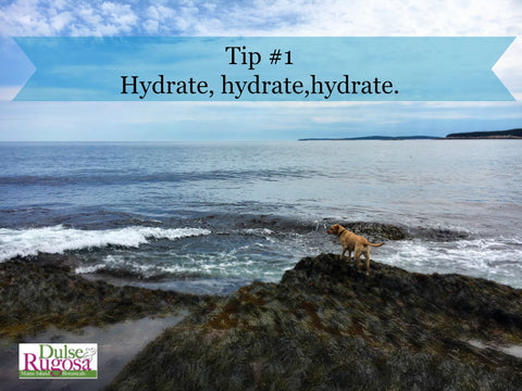 Beauty tips from dogs- drink plenty of water.