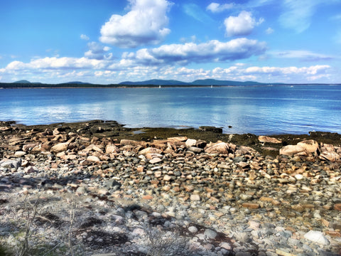 The beauty of earh, sea and sky in Maine.
