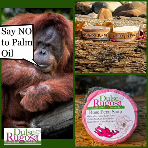 Say NO to Palm oil.