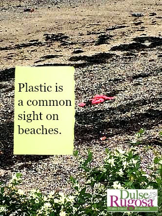 Plastic is a common sight on beaches.