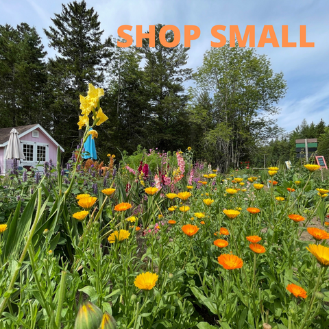 Garden and small shop to encourage people to shop small and local