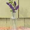 A dried flower vase made from our Hair Oil bottle- tiny and cute.