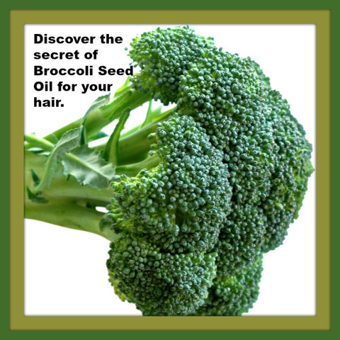 Discover the secret of broccoli oil for your hair.
