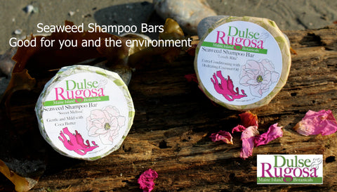 Shampoo bars- good for you and the environment.