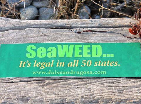 Support Seaweed Bumper Sticker