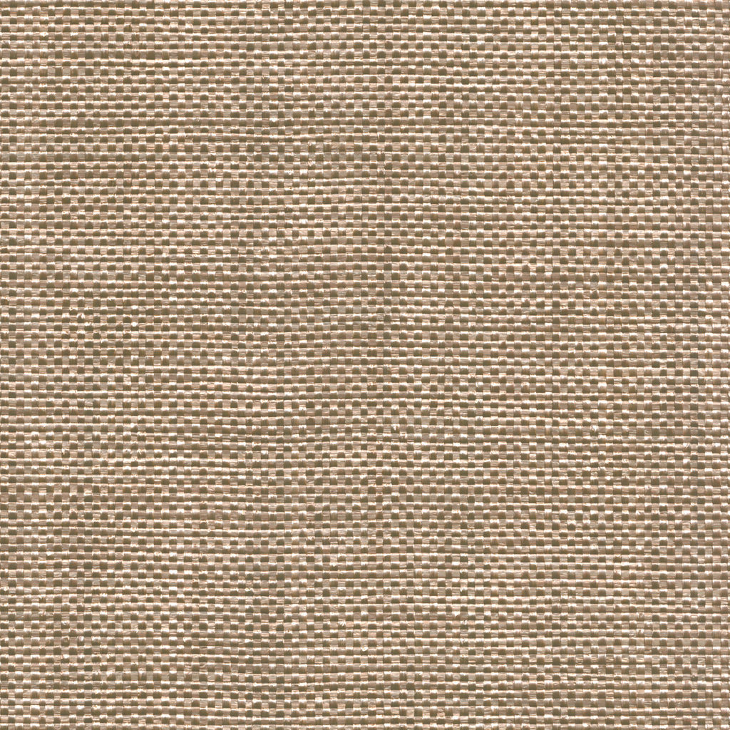 Mother Nature Noreaster Brown Solid Woven Flat Upholstery Fabric