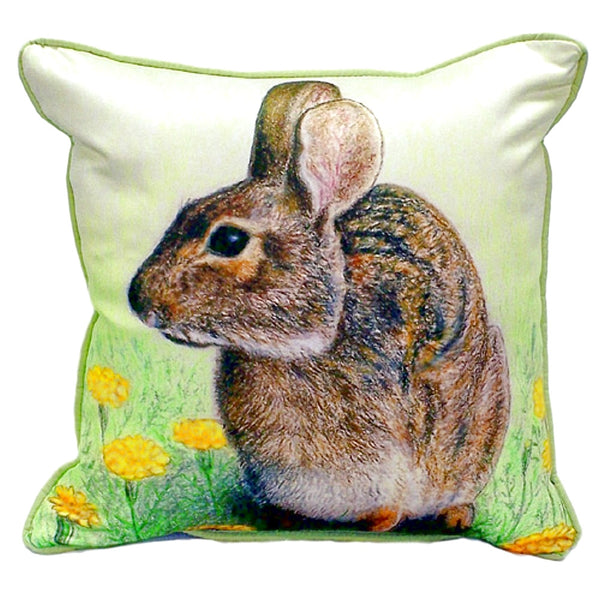 Rabbit Extra Large Zippered Indoor or Outdoor Pillow 22x22