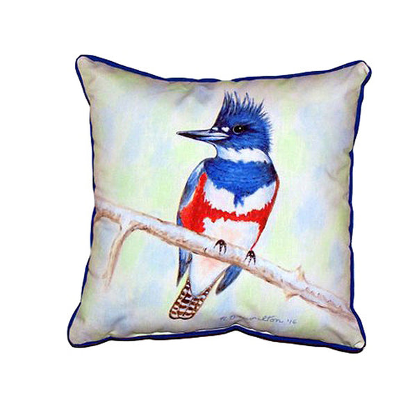 Kingfisher Extra Large Zippered Indoor or Outdoor Pillow 22x22