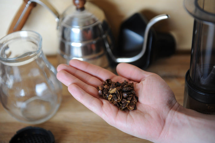 Cascara: How to Enjoy Tea From Coffee Cherries