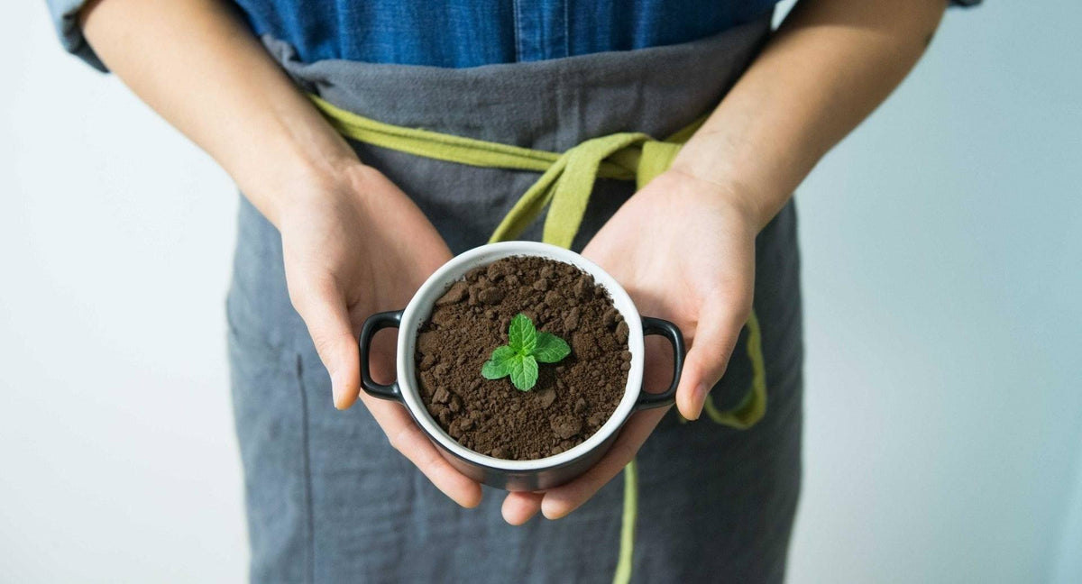 how to dispose of coffee grounds