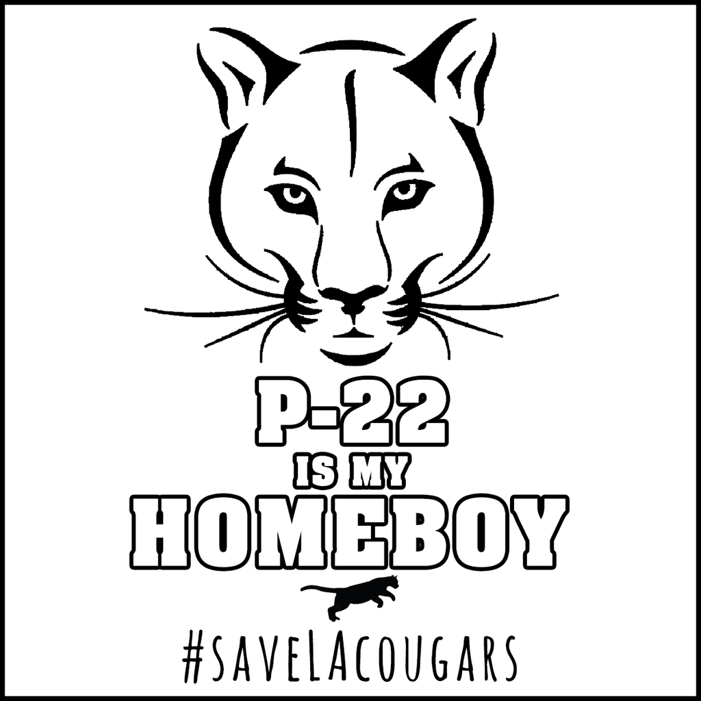 P-22 is my Homeboy Sticker