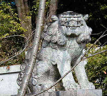 Shi-Shi Lion on street near Yoko's house