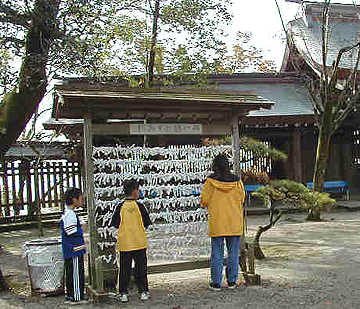 omikuji at shrine