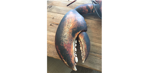 4' Wood and Steel Lobster