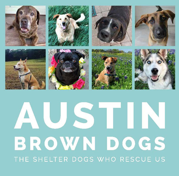 Austin Brown Dogs: The Shelter Dogs Who Rescue Us