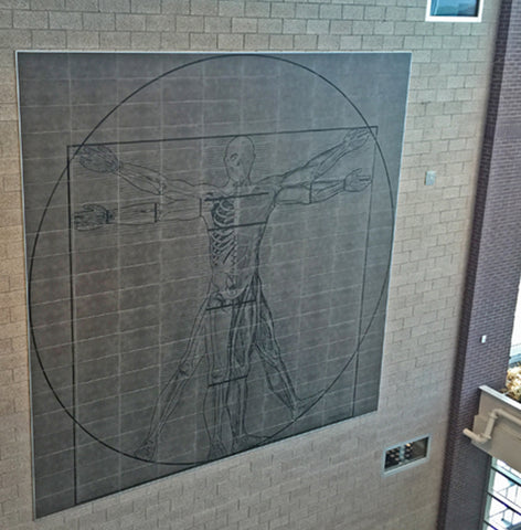 Vitruvian Man 20' x 20' Etched Porcelain Wall Mural - Jenks, OK