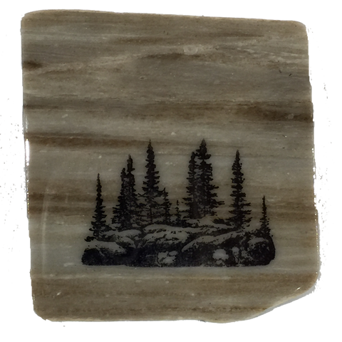 Large Group of Trees - Coasters - The Cuckoo's Nest
