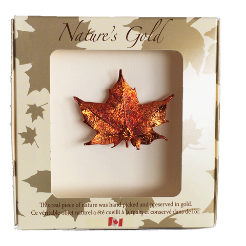 Maple Leaf Brooch - Iridescent - Jewellery - The Cuckoo's Nest