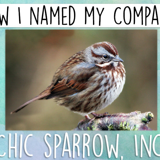 Naming Chic Sparrow