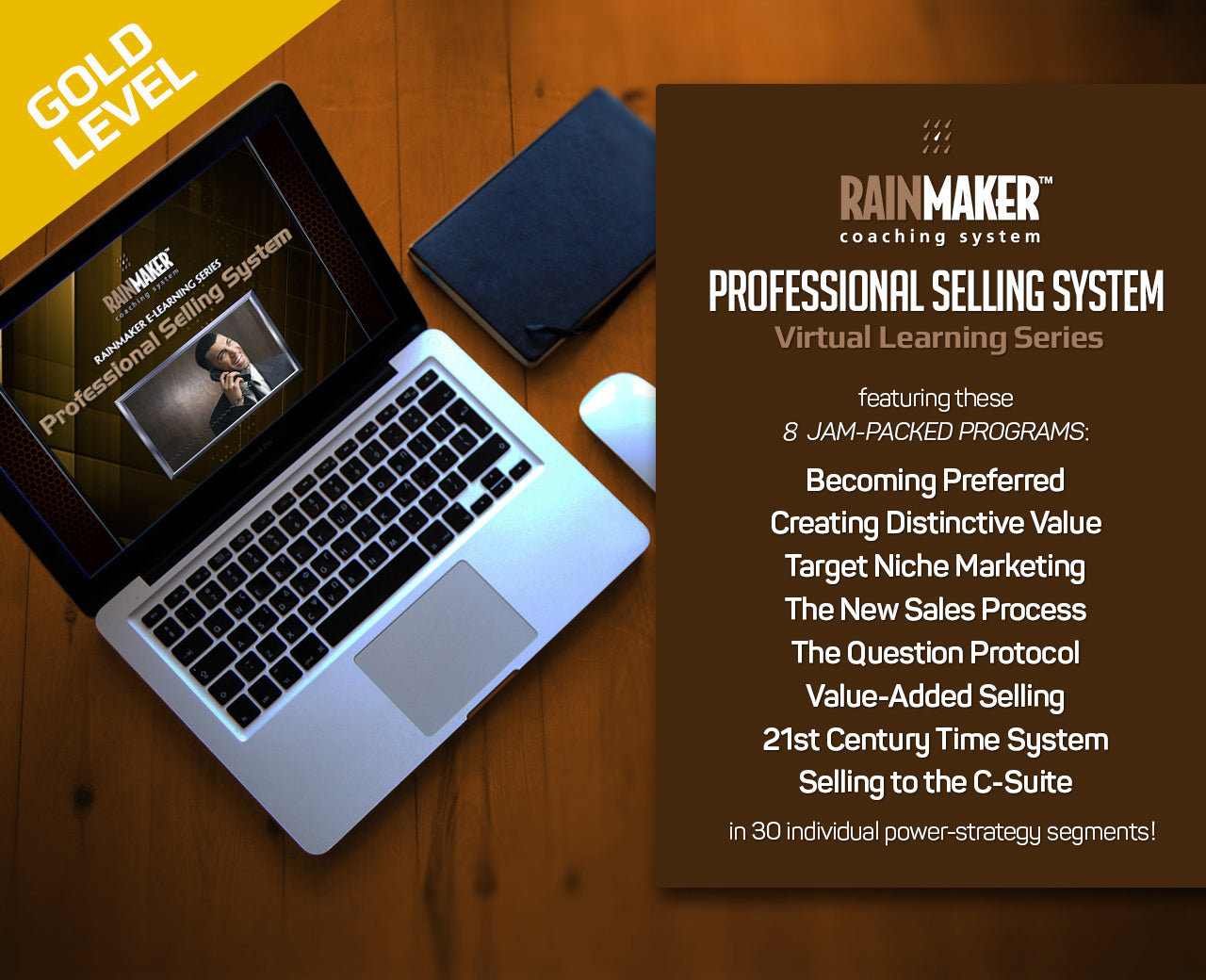 Rainmaker Professional Selling System - 1 Year Subscription (Billed Monthly)