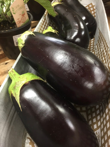 Aubergine Click & Collect