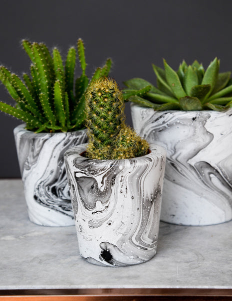 Black & White Marble Cement cacti succulent planter pot