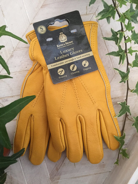 Kent & Stowe Luxury Leather Gloves