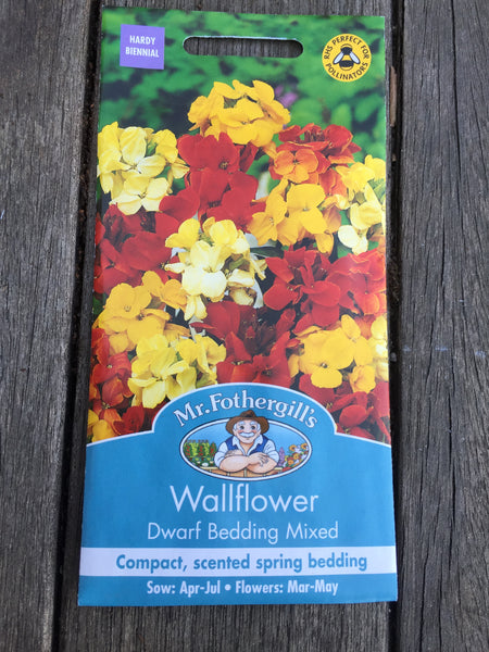 Wallflower Dwarf Bedding Mixed by Mr Fothergill's