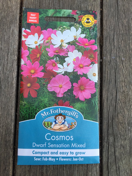 Cosmos Dwarf Sensation Mixed Seeds by Mr Fothergill's