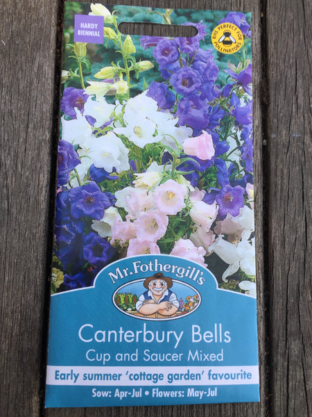 Canterbury Bells Cup & Saucer Mixed by Mr Fothergill's
