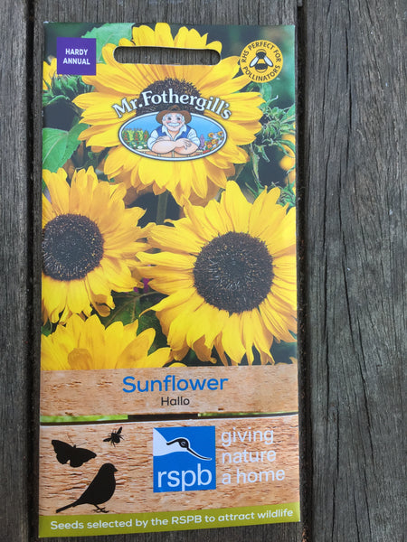 Sunflower Hallo Seeds RSPB by Mr Fothergill's