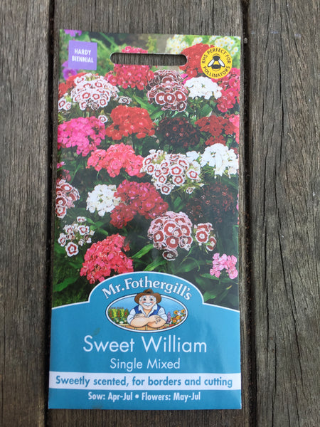 Sweet William Single Mixed Seeds by Mr Fothergill's