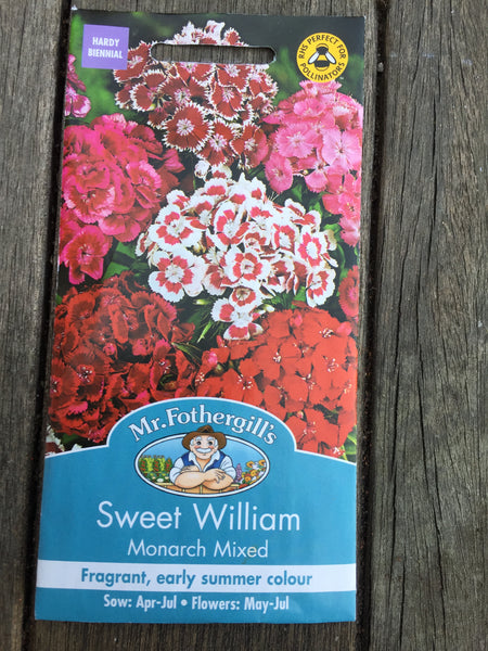 Sweet William Monarch Mixed Seeds by Mr Fothergill's