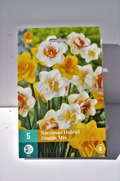 Narcissus Double Mix bulbs