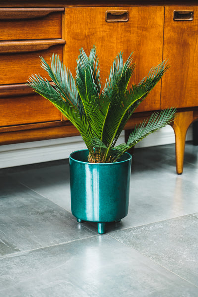 Pisa Emerald Planter